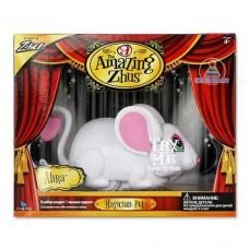Мышка-циркач Абра, Amazing Zhus