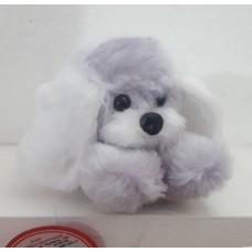 Собака Жулька